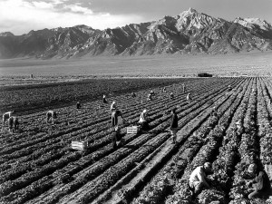 Manzanar by Ansel Adams