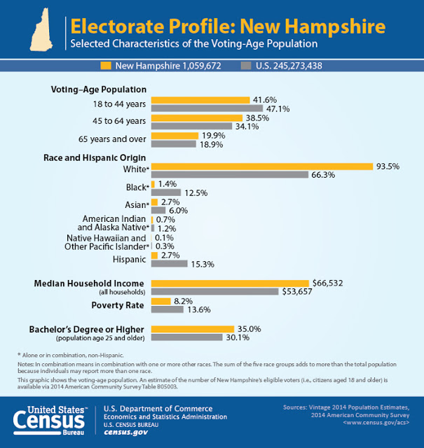 New Hampshire voters